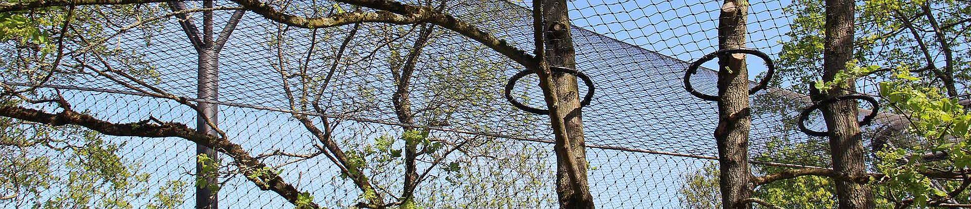 Schneeleoparden Gehege Stuttgart Wilhelma X-TEND Edelstahl-SeilnetzSchneeleoparden Gehege Stuttgart Wilhelma X-TEND Edelstahl-Seilnetz