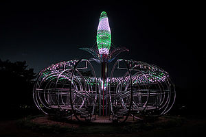 Amaranth Changwon X-LED X-TEND Colours