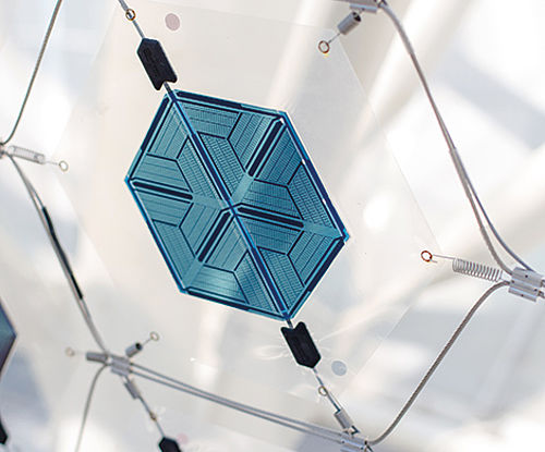 Organic photovoltaic