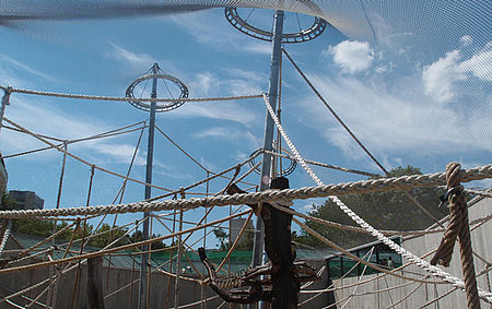 Suspended ropes monkey enclosures