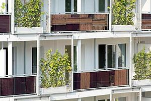 Case study house Hamburg X-TEND Edelstahl-Seilnetz Fassadenbegrünung