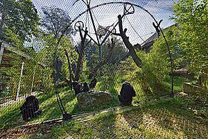 Bonobo Anlage Zoo Wuppertal Carl Stahl Architektur