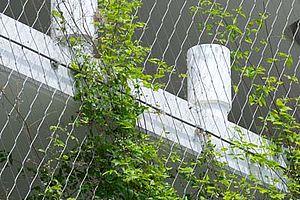 Begrünung Parkhaus Schiffbauergasse X-TEND Edelstahl-Seilnetz