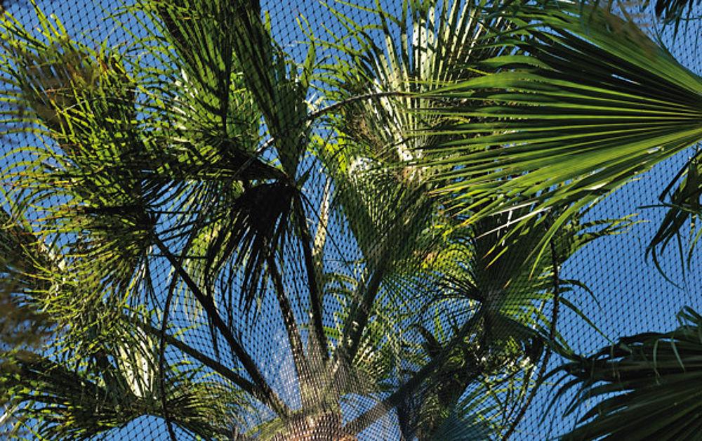 Naturbelassene Umgebung Bäume Integration Zooanlagen mit X-TEND