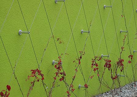 Fassadenbegrünung Fassadengestaltung X-TEND Edelstahl-Seilnetz