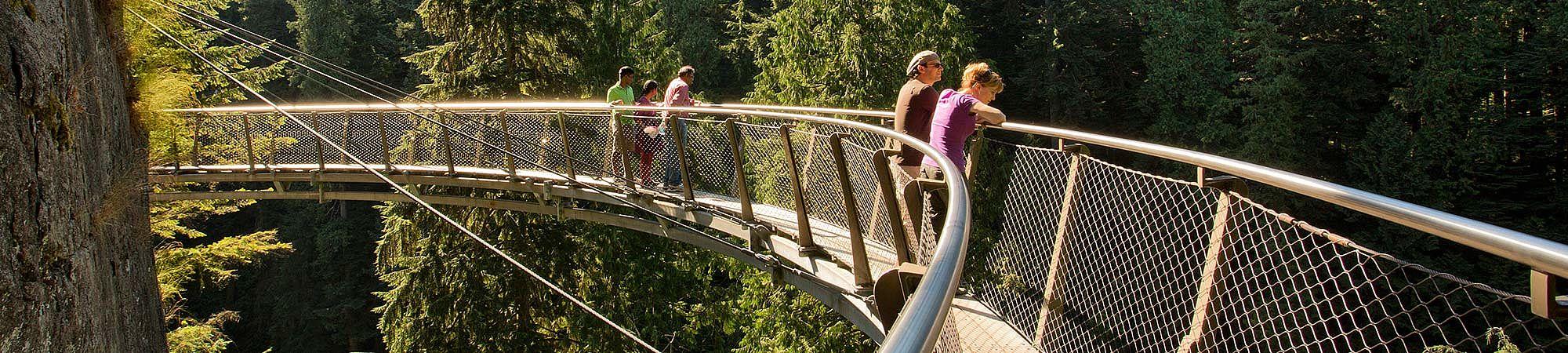 Hängebrücke Geländerfüllung X-TEND Edelstahl-Seilnetz