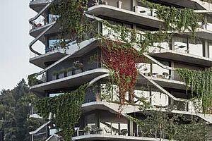 Fassadenbegrünung Garden-Tower Wabern X-TEND Edelstahl-Seilnetz