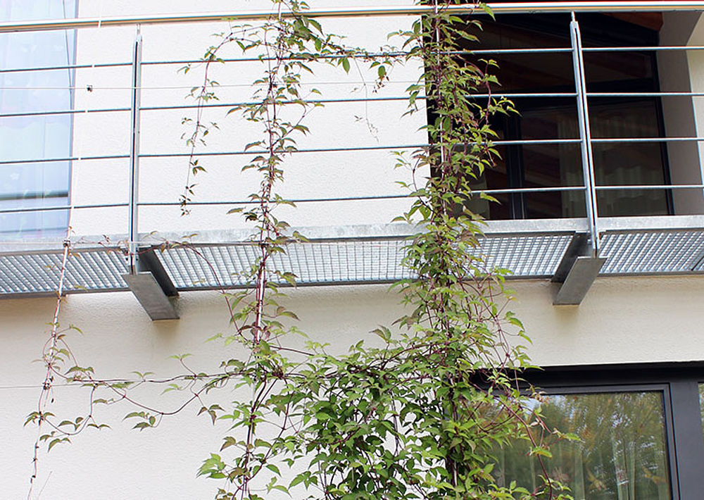 Greenery wire rope systems