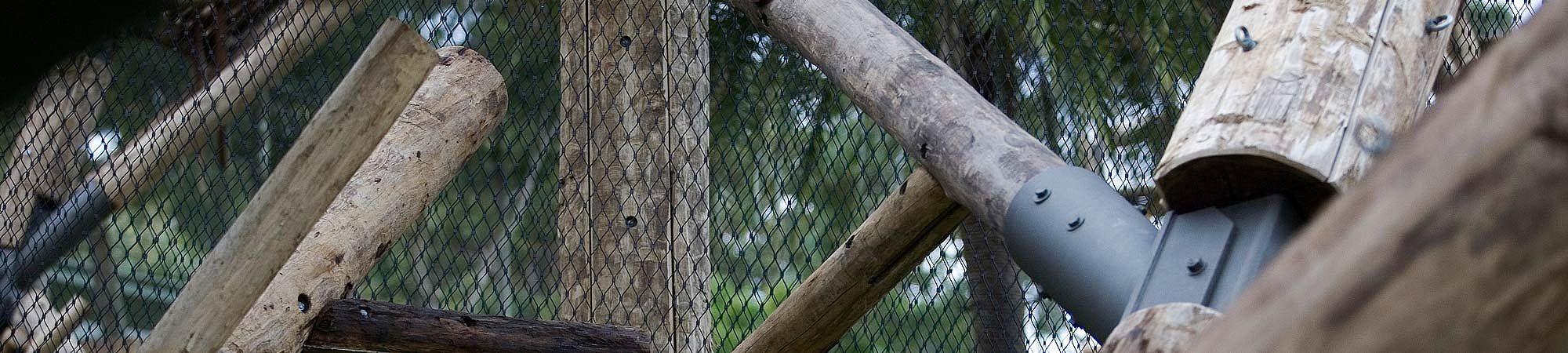 Taronga Zoo Gehege für Schimpansen