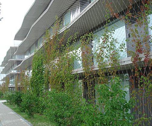 végétalisation de façade sur protection antichute