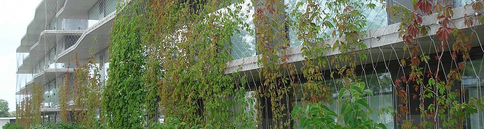 Façade greenery X-TEND stainless steel cable mesh
