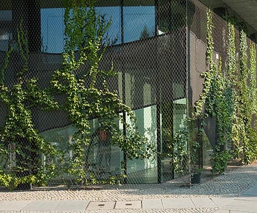 Begrünung begrünte Fassade X-TEND Edelstahl-Seilnetz