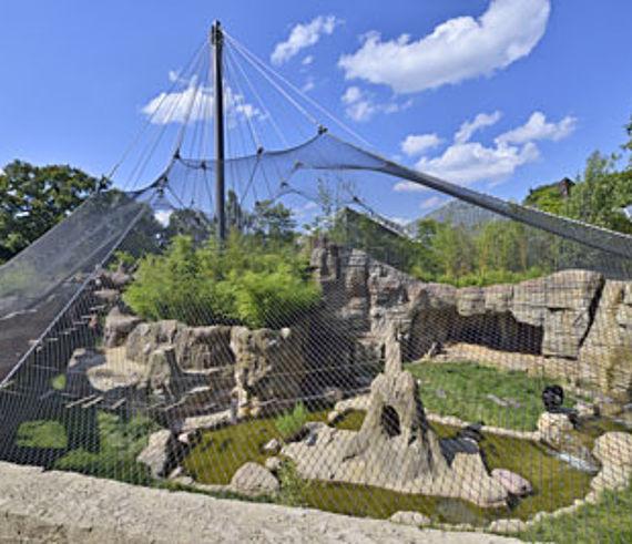 Zoo Hannover Schimpansenanlage