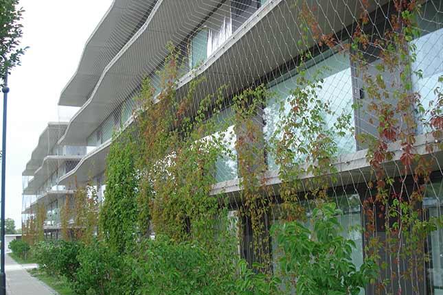 Façade greenery